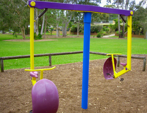 The Benefits of Motion in the Playground